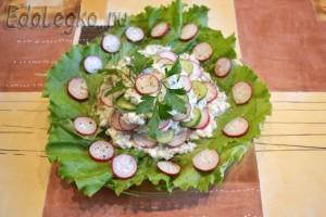 салат из редиски  - с огурцом и творожно-яичной заправкой