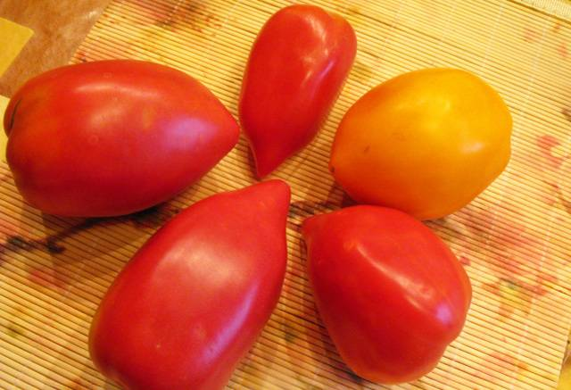 рецепт малосольных зеленых помидоров быстрого приготовления