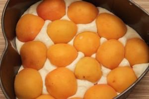 запеканка из творога с фруктами - слой абрикосов