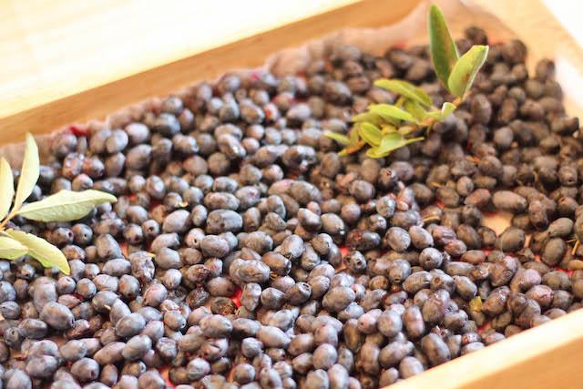 как заморозить жимолость - ягоды