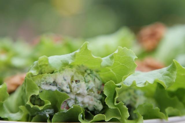 летние закуски с салатом - начинка рикотта