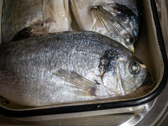 дорадо запеченная в духовке - рыба