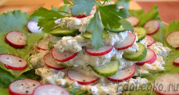 Салат из редиски и огурцов с творожным сыром