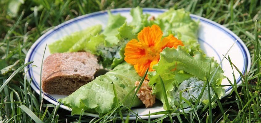 Летние закуски с салатом